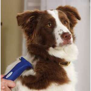Dog-Grooming-Deshedding