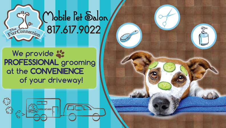 Pet-Dog-Grooming-Front-Page